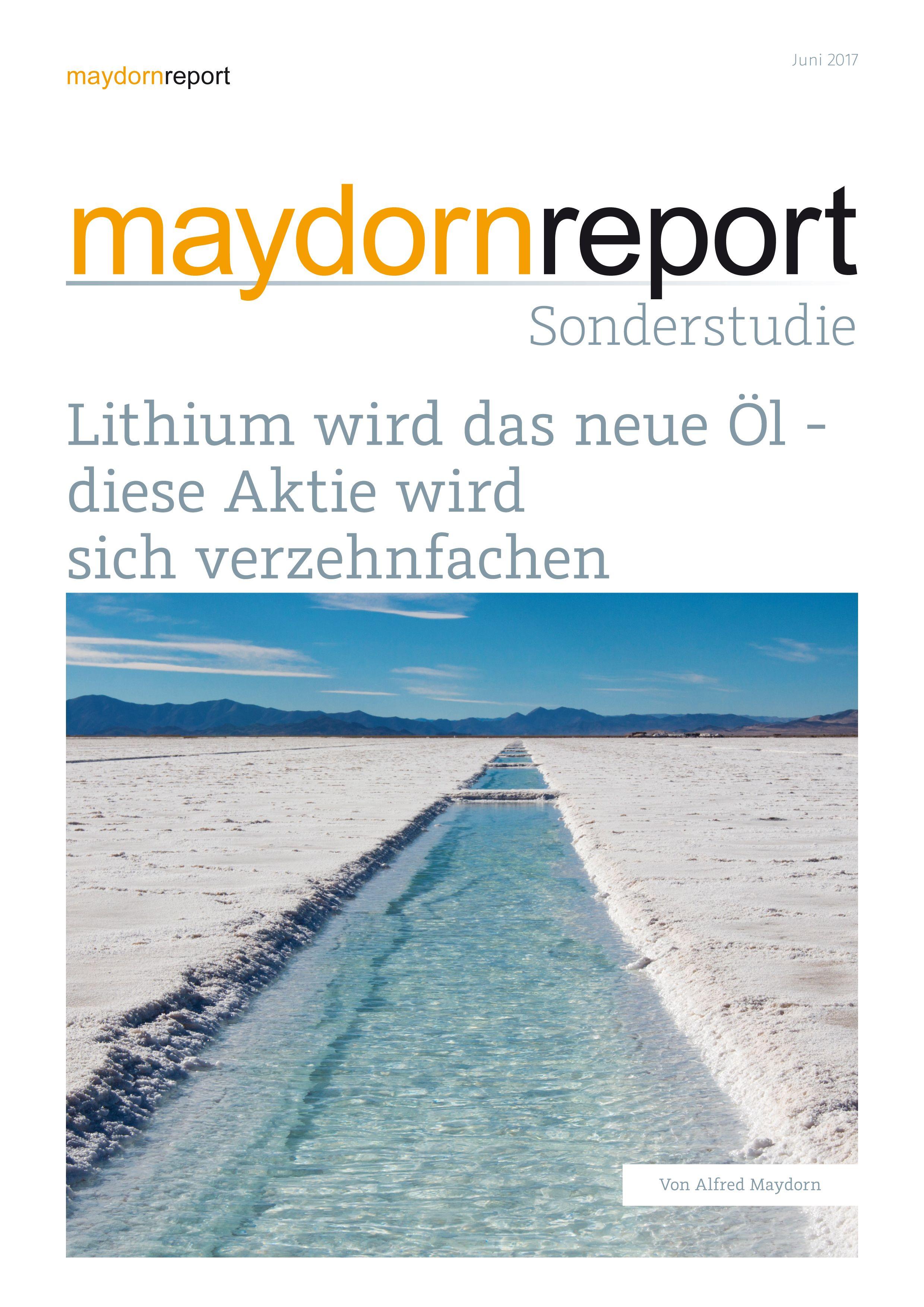 Lithium-Studie.jpg
